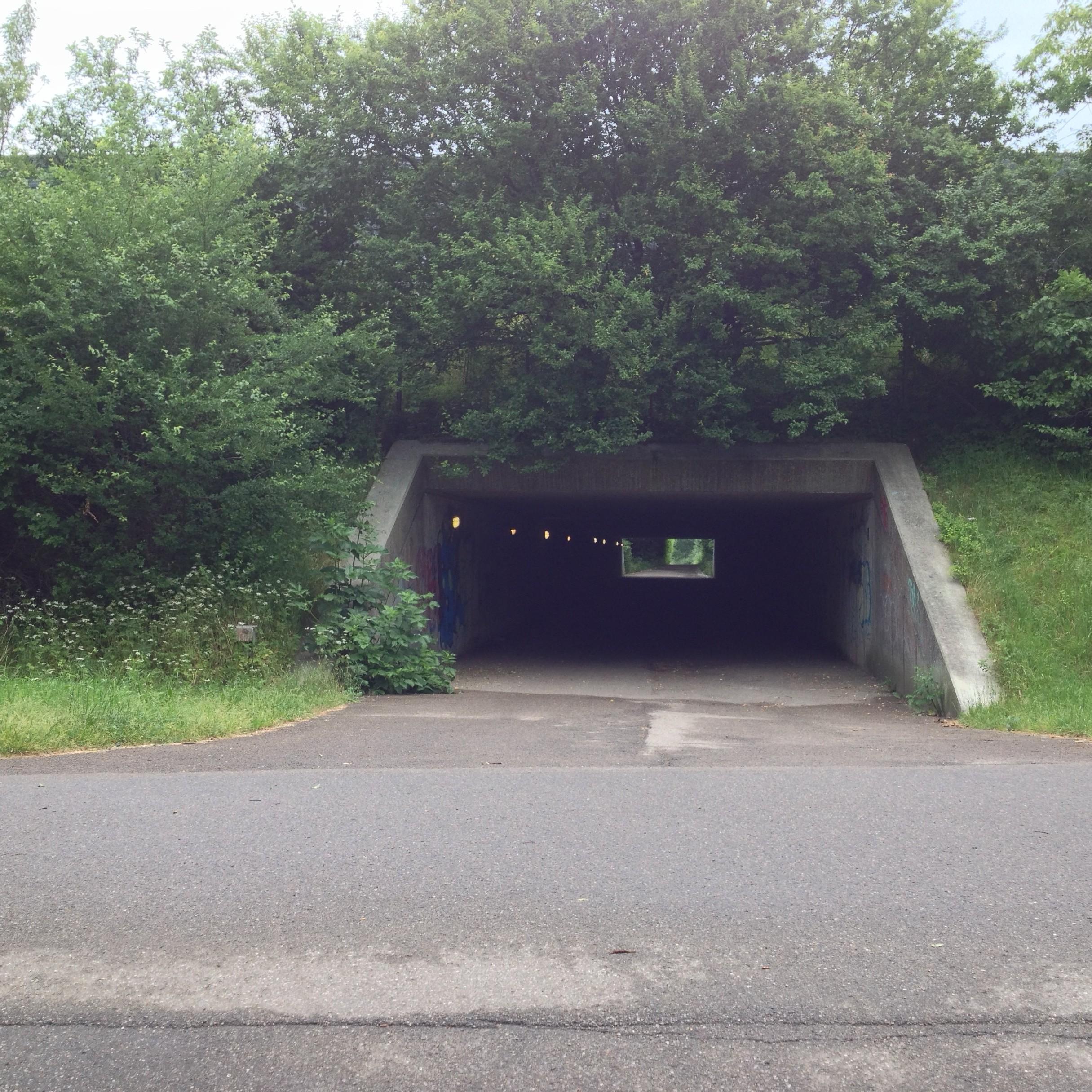 Segment 1.1, tunnellen set fra vest mod øst.