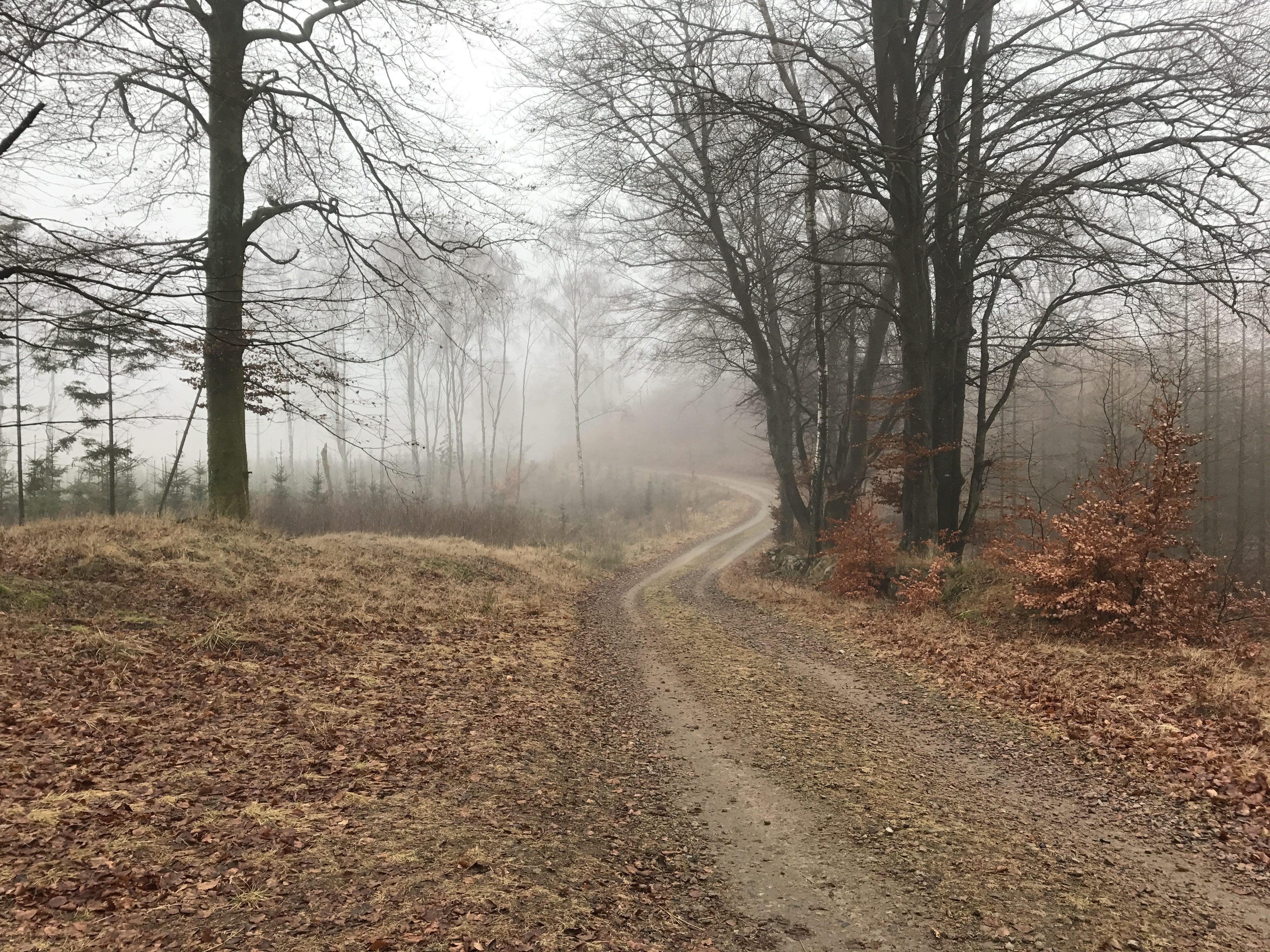 Häckeberga Runt - grusveje præger den første del af turen.